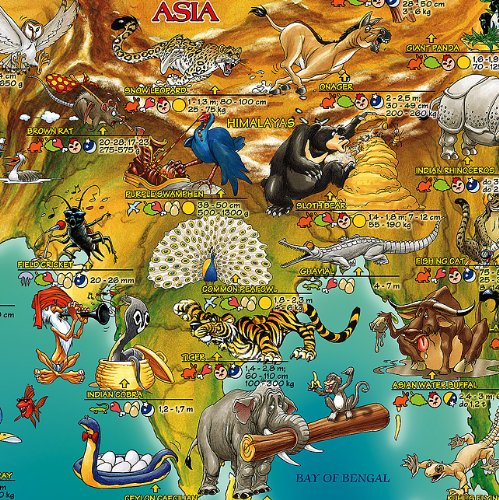 Childrens animals of the world wall map childrens mapslaminated childrens animals of the world wall map childrens mapslaminated amazon dinos 9780954905668 books gumiabroncs Image collections