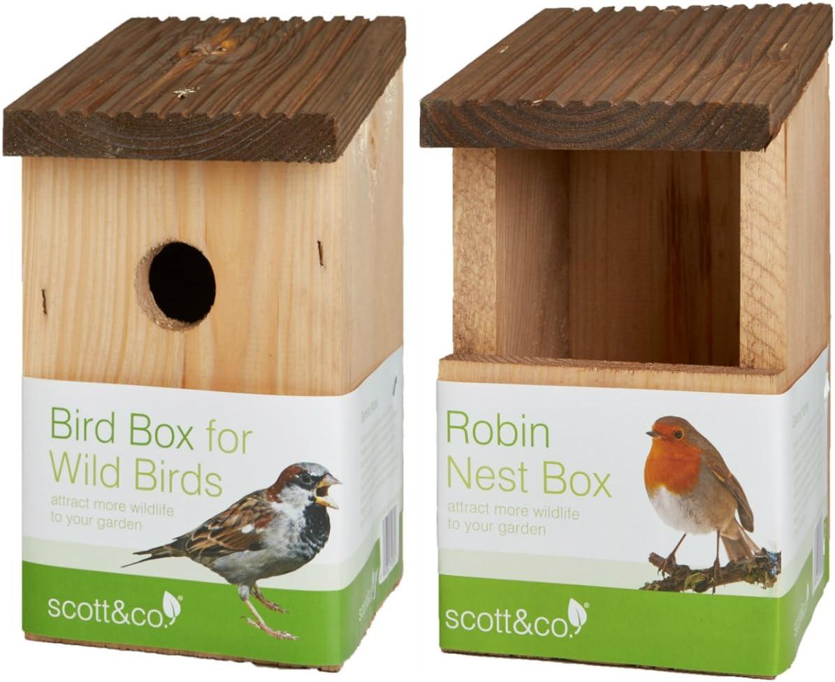 Scott y Co caja de nido de pájaro. x 1 y Robin de nido de caja. x 1, un gran regalo: Amazon.es: Jardín
