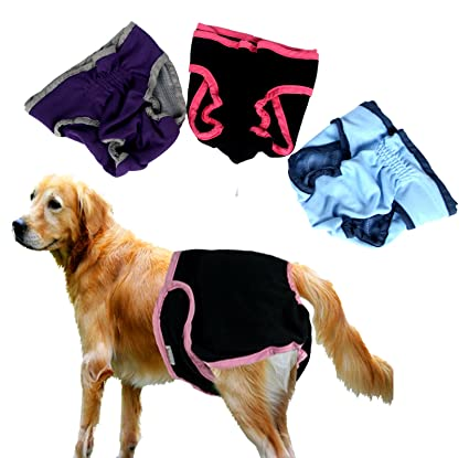 Yier Pañales de perro lavable para perros grandes Paquete de 3