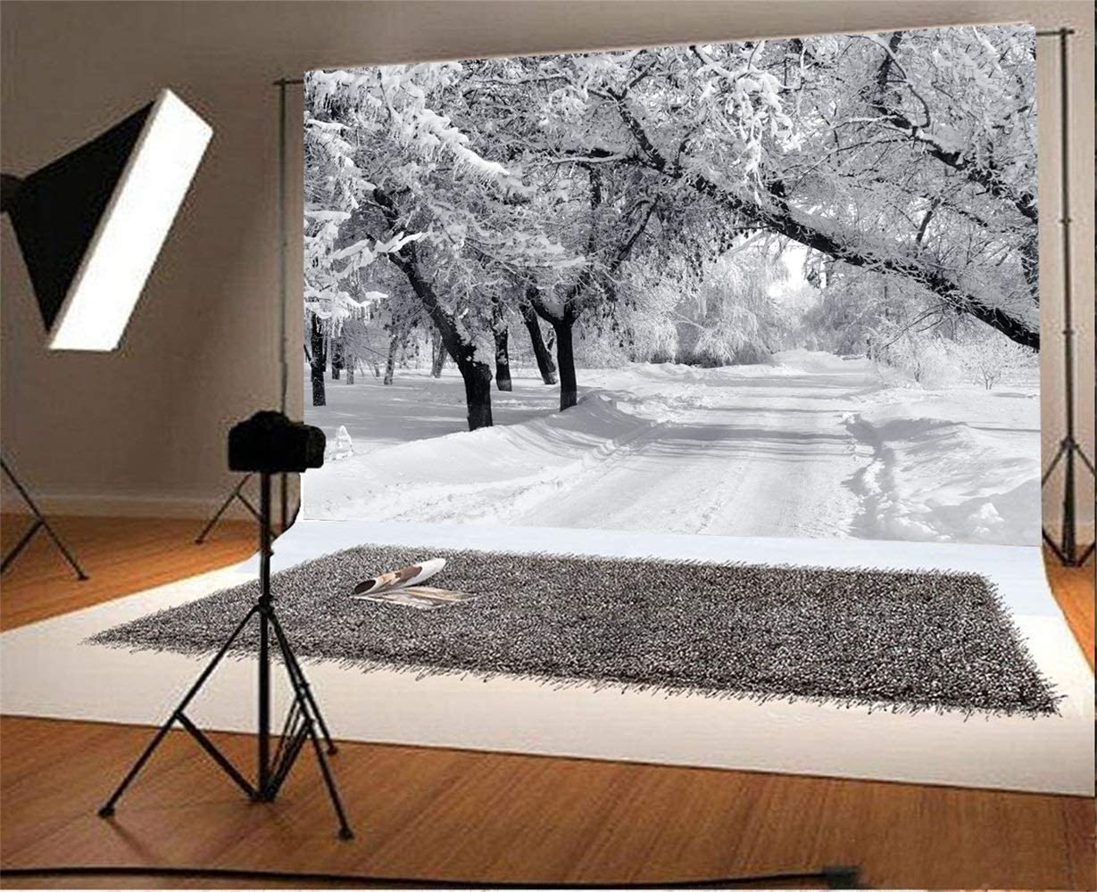 Winter Snowscape Backdrop 10x7ft Vinyl Black and White Photo of The Winter Snowy Park Road Frosty Trees Photography Background Nostalgia Style Scenic Kids Baby Shoot Poster