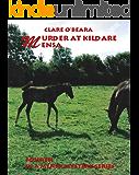 Murder At Kildare Mensa (Mensa Mystery Series Book 4)