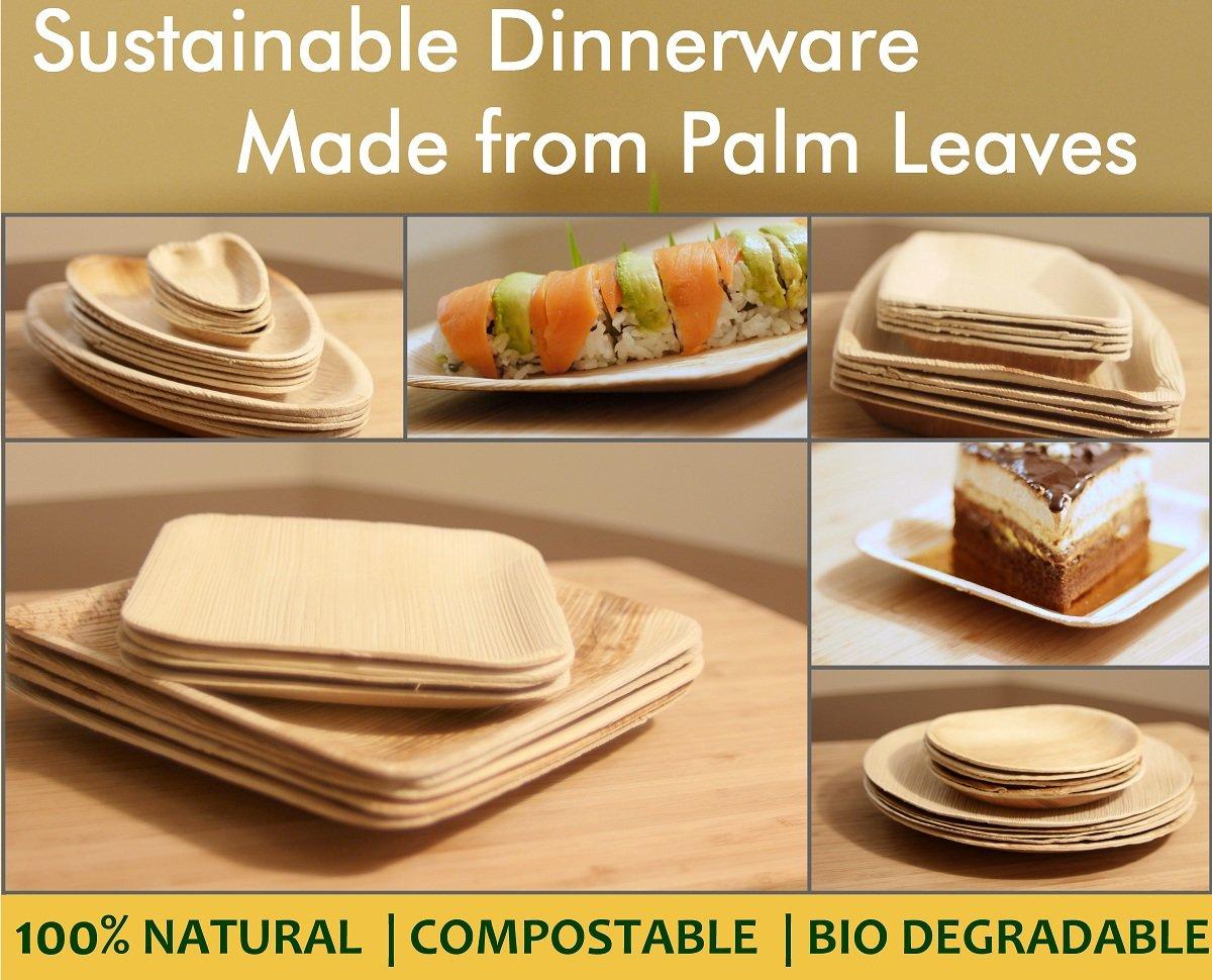 Leaf & Fiber 100 Count Palm Leaf Square Tableware Plate, 8-Inch