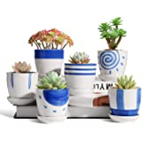 T4U Ceramic Japanese Succulent Pots 3 Inch Blue and White Collection Set of 6 with Fixed Trays, Small Plant Planter with…