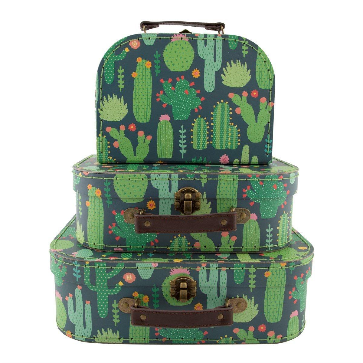 Set de 3 Cactus De Decoración Cactus verde Vintage Mini Maletas Cajas de almacenamiento: Amazon.es: Hogar