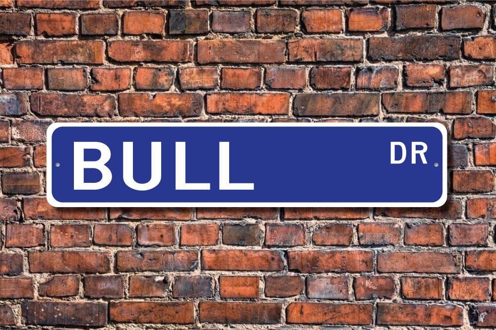 CELYCASY Bull Bull - Cartel de regalo, diseño de toro ...