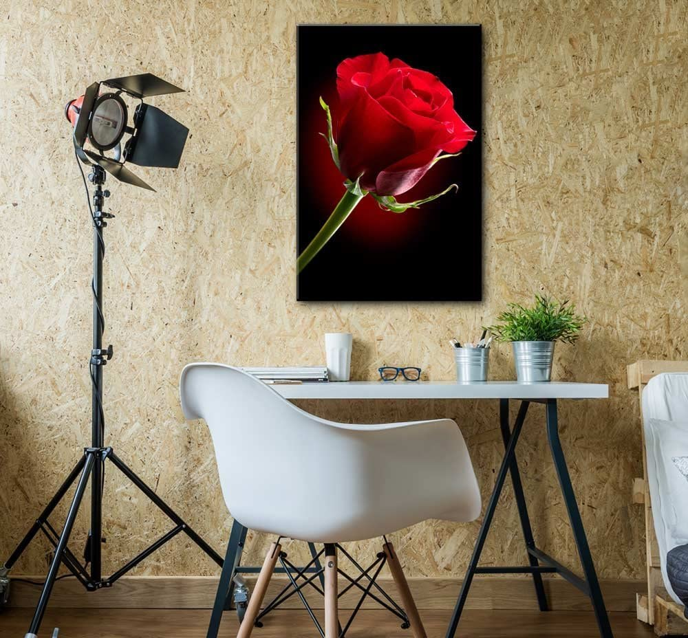 Canvas Prints Wall Art - Closeup of Red Rose Flower Against Black Background | Modern Wall Decor/Home Decoration Stretched Gallery Canvas Wrap Giclee Print & Ready to Hang - 24