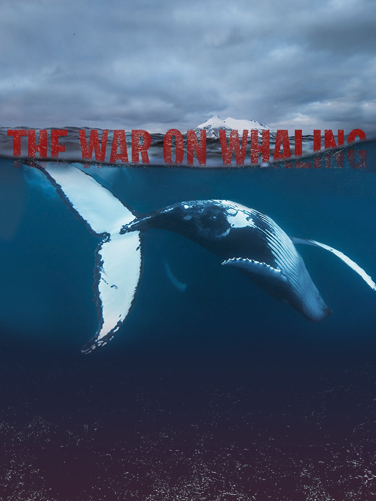 The War on Whaling on Amazon Prime Video UK