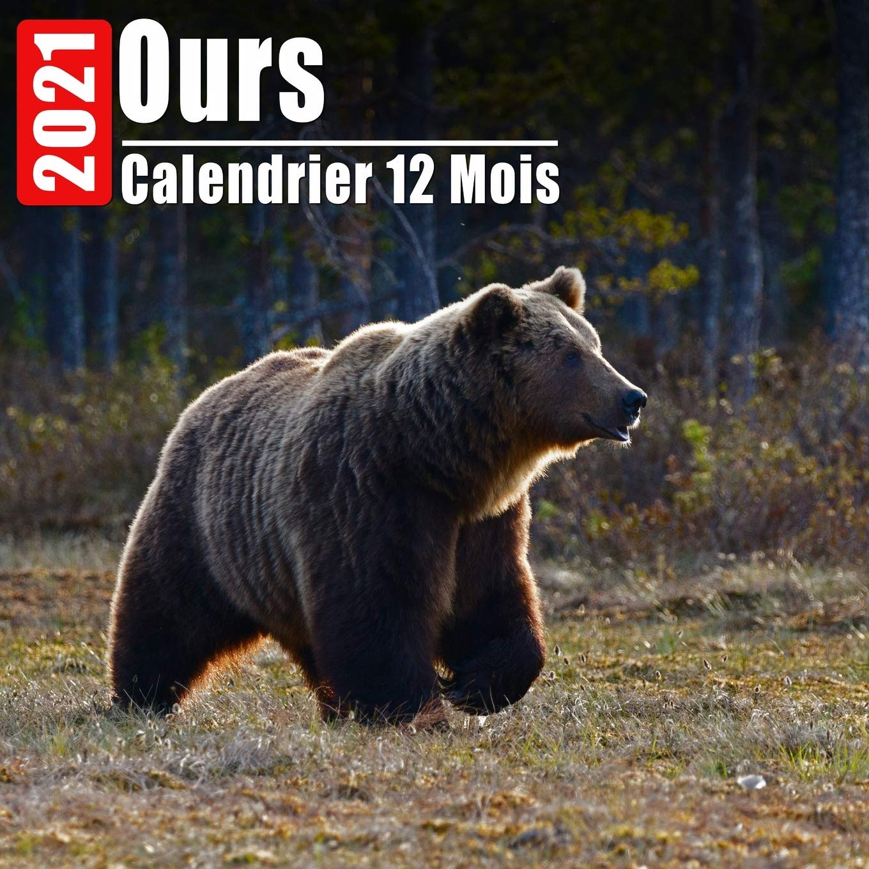 Mini Calendrier 2021 Calendrier 2021 Ours: Mini Photos Calendrier Ours Et Organisateur