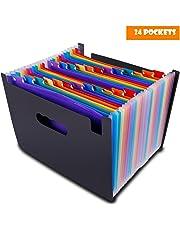 Carpeta Clasificadora Archivador Acordeon 24 Bolsillos Ampliación Carpeta de Archivos A4 Plastico Organizador Soporte Extensible Portátil