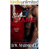 Stolen Flame (The Seven Chambers Series)