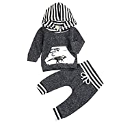 Younger star Toddler Infant Baby Boys Dinosaur Long Sleeve Hoodie Tops Sweatsuit Pants Outfit Set, Gray, 0-6Months (Tag Size 70)