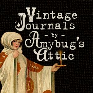 Amybug's Attic