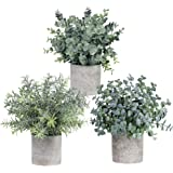 Winlyn Set of 3 Mini Potted Artificial Eucalyptus Plants Plastic Fake Green Rosemary Plant for Home Decor Office Desk Shower