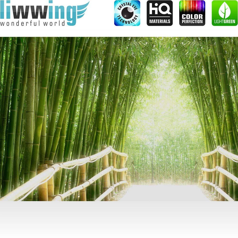 Vlies Fototapete 350x245 cm PREMIUM PREMIUM PREMIUM PLUS HiQ - OEKO-TEX Standard 100 Wand Foto Tapete Wand Bild Vliestapete - BAMBOO WALK - Bambusweg Bambuswald Dschungel Asia Asien Bamboo Way Wald - no. 0002 B00LUR99Z4 Wandtattoos & Wandbilder 2cd857