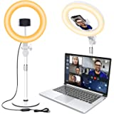 Video Conference Lighting for Laptop Computer, 10.5'' Selfie Ring Light with Stand and Phone Holder for Remote Working, Zoom