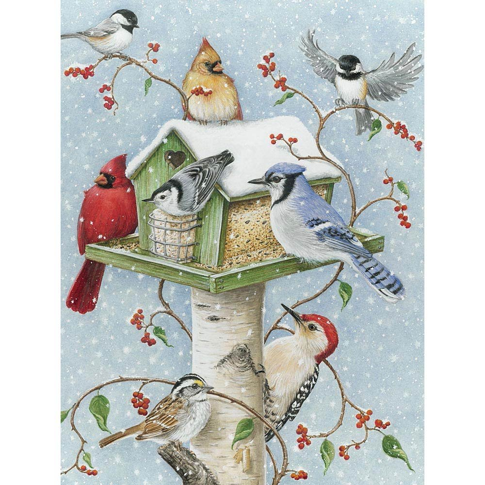 Bits and Pieces - 300 Piece Jigsaw Puzzle - Winter Birds, Birds in the Snow - by Artist Kathy Goff - 300 pc Jigsaw by Bits and Pieces