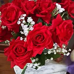 薔薇 画像 素材 無料 無料アイコンダウンロードサイト