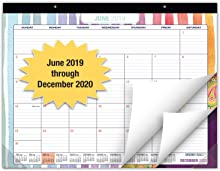 """Desk Calendar 2019-2020: Large Monthly Pages - 22""""x17"""" - Runs from June 2019 Through December 2020 - Desk/Wall Calendar can be Used Throughout 2020."""