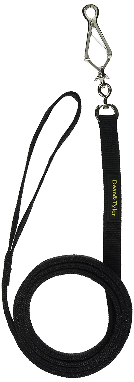 Dean & Tyler Night Walk Double Ply Dog Leash with Herm Sprenger Snap Hook, 6-Feet by 3 4-Inch, Black