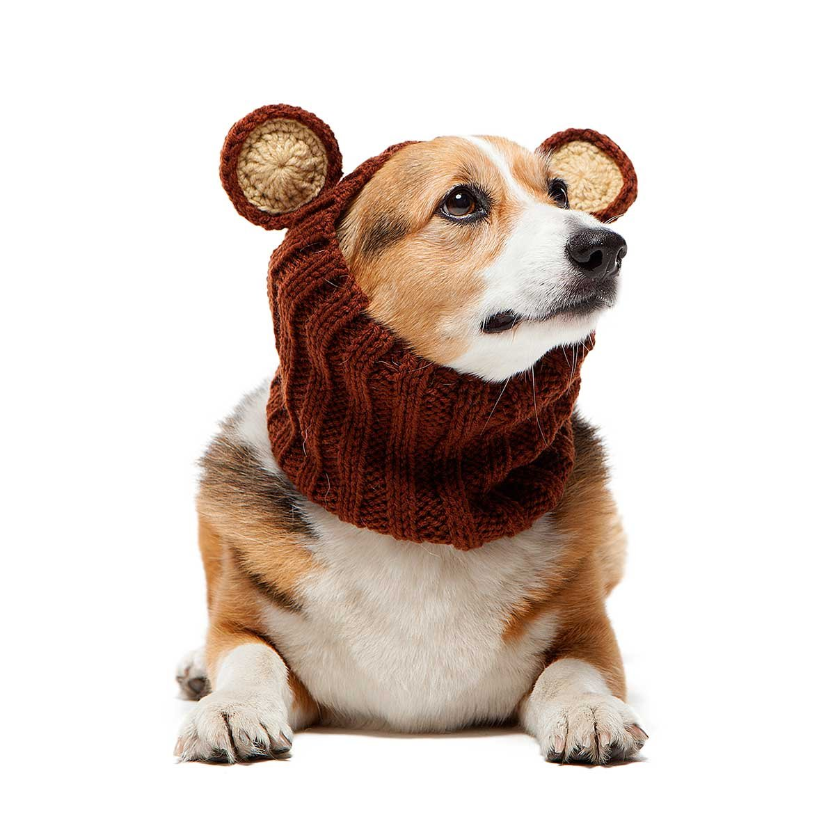 (Medium) Zoo Snoods The Original Knit Grizzly Bear Dog Snood