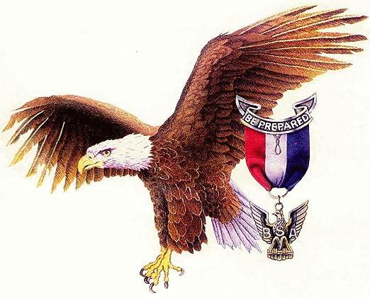 Amazon.com: American Eagle Scout Comestible Decoración Para ...