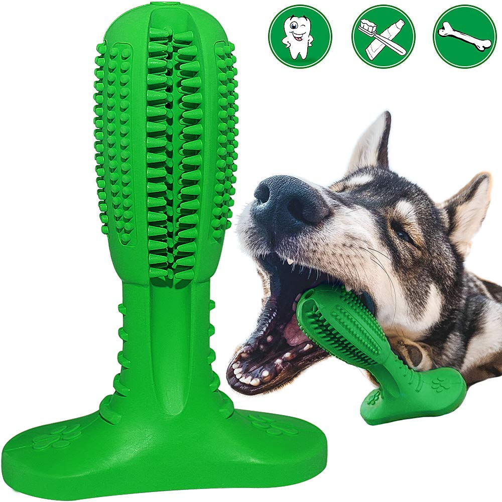 RUCACIO Dog Toothbrush Stick,Puppy Dental Care Brushing Chew Toys Effective Doggy Teeth Cleaning Massager Nontoxic Natural Rubber Bite Resistant(Fits 20-40lbs Small Medium Dogs)