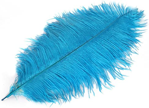 Plume for Wedding Centerpieces Home Decoration Wionya 10pcs Ostrich Feather Craft 14-16inch 35-40