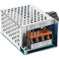 SCR, elektronische spanningsregelaar, Governor dimmer, thermostaat, toerentalregelaar, 4000 W, AC 220 V
