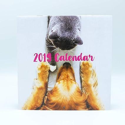 Calendario de pared Perros y Gatos 2019 marca Edicards. Impreso en papel fotográfico de alta calidad. (30x30 cm): Amazon.es: Oficina y papelería