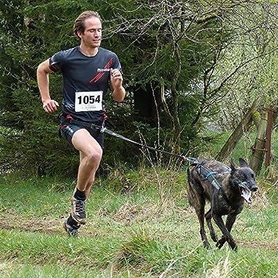Non-Stop dogwear - Arnés / Cinturón para Canicross Running Belt ...