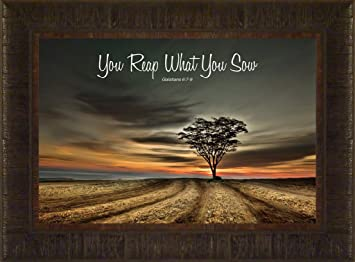 Amazoncom Reap What You Sow By Todd Thunstedt 175x235 Farm All