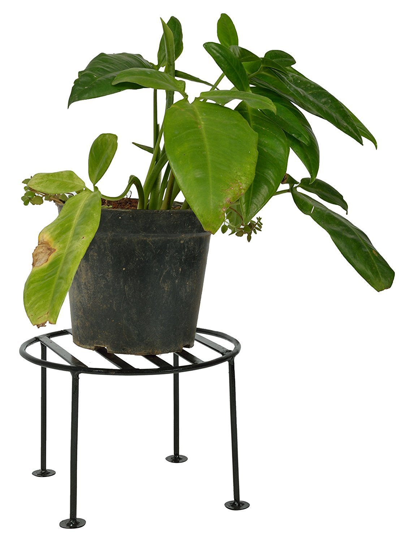 Green Gardenia Iron Plant Stand/Pot Stand (Medium) product image