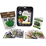 Culinary Herb Seeds Outdoor & Indoor Herb Garden Kit - 10 Herb Garden Seeds, 20 Instant Soil Pucks, & Greenhouse - Basil Seed