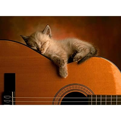 Adult Puzzle Classic Jigsaw Puzzle 1000 Pieces DIY Kitten Sleeping on The Guitar Wooden Puzzle Festival Gift Wall Decoration Mural Home Art 75x50cm: Toys & Games