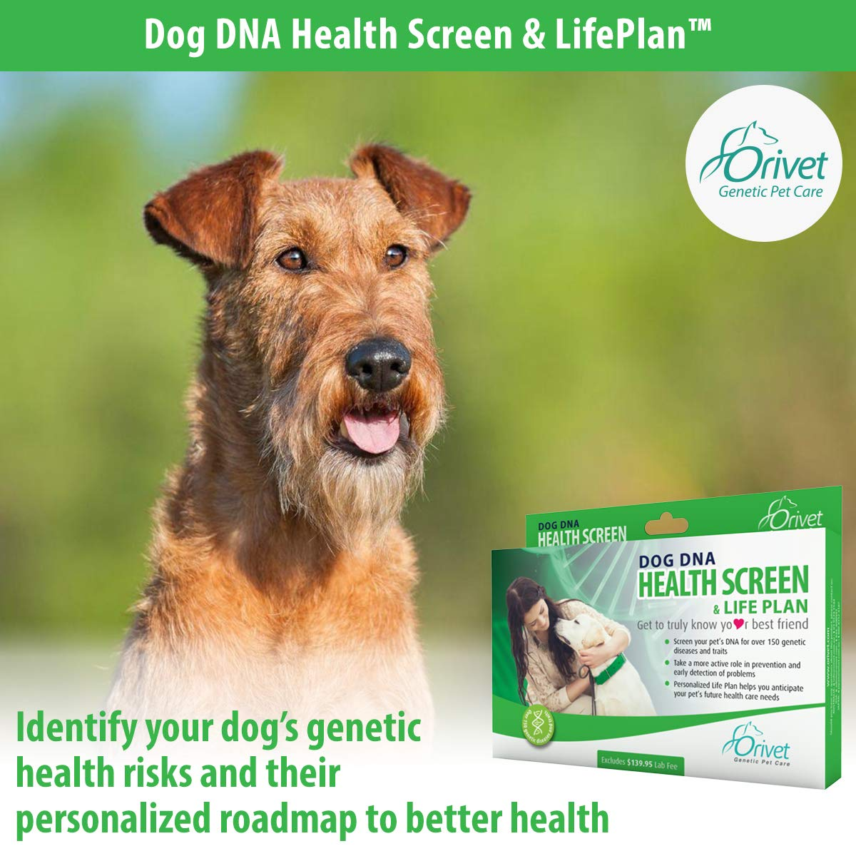 ORIVET Dog DNA Test Kit Health Screen with Life Plan
