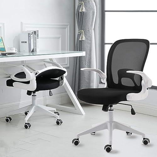 IPKIG Ergonomic Office Chair
