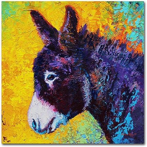 Donkey Sparky