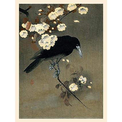 Koson Crow /& Blossom Art Print Poster Hp4071