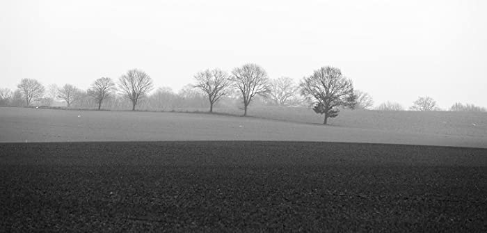 German landscape northern germany fine art photography black and white photography german