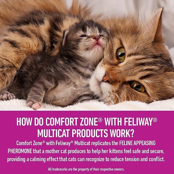 Zona de Confort Feliway multicat difusor y Recarga para Gatos calmante: Amazon.es: Productos para mascotas