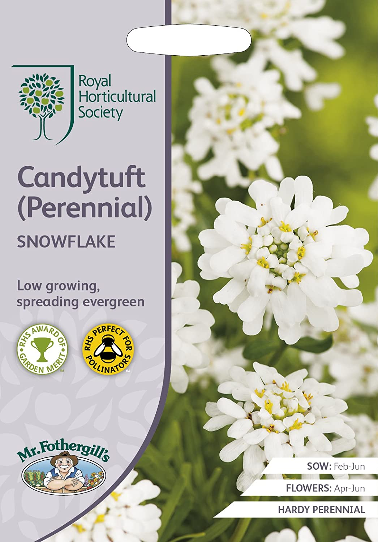 RHS CANDYTUFT (Perennial) Snowflake Seeds (1)