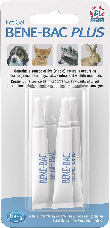 PetAg Bene-Bac Plus Pet Gel FOS Prebiotic and Probiotic, 4 Pk