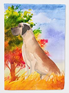 Caroline's Treasures CK1941GF Fall Great Dane Flag Garden Size, Small, Multicolor