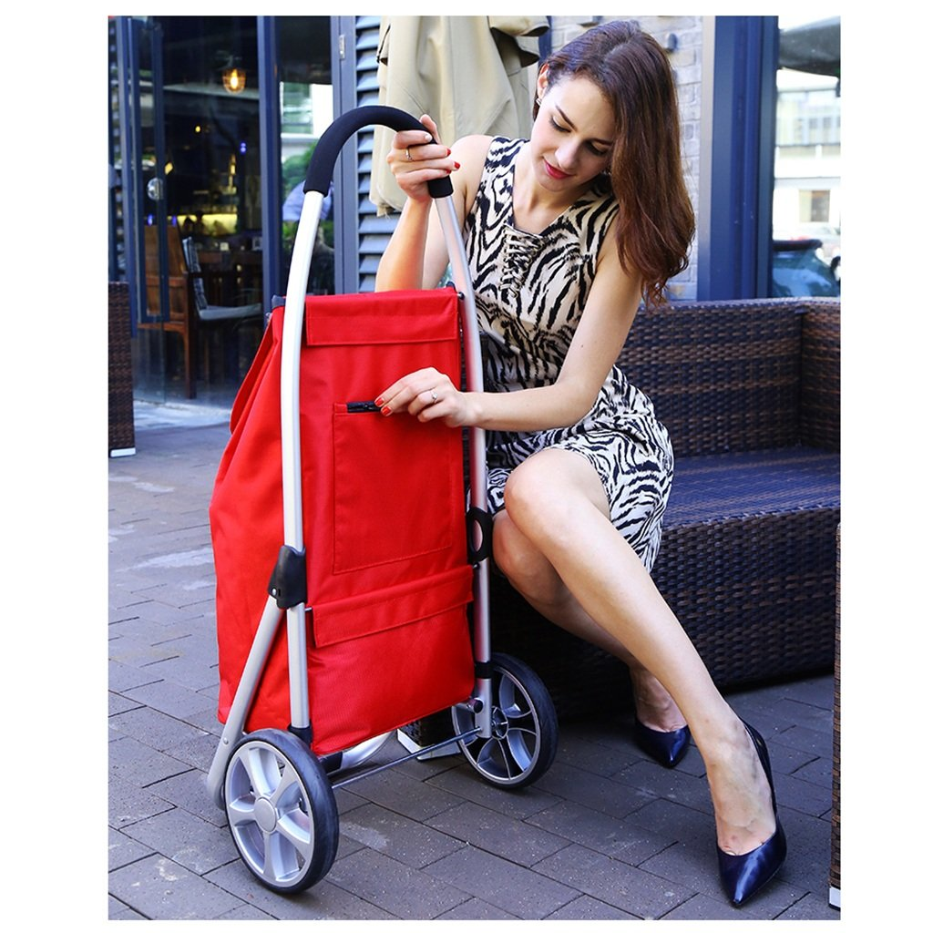 RHHWJJXB Aluminum Shopping Cart Shopping Cart Climbing Car Stroller Portable Small Cart Folding Trolley Car (Color : E) by RHHWJJXB (Image #5)
