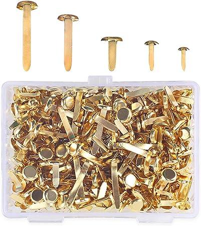 Assorted Sizes Crafts Split Pins Scrapbooking Brads Mini Brads Gold Round Metal Brads Craft Brads for Scrapbooking Crafts DIY Paper Card Making Pinwheel Fodlon 500Pcs Paper Fasteners