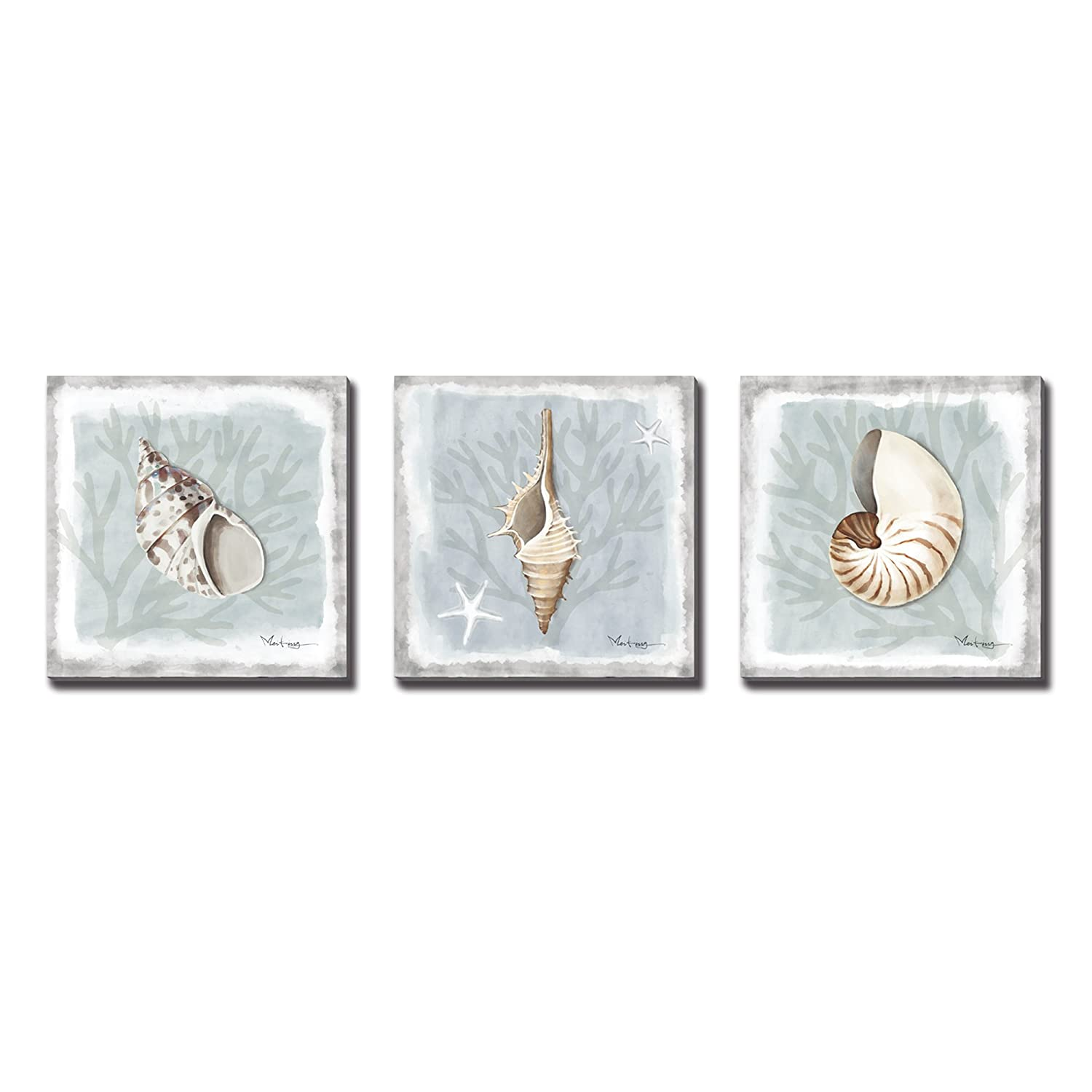 3Hdeko-3 Panels Seashell Decor Mordern Abstract Painting Conch Coastal Artwork Pictures Framed Paintings on Canvas Wall Art for Living Room Bedroom Home Decor 12x12 Inch x3pcs PR-LF-019-1010-GW