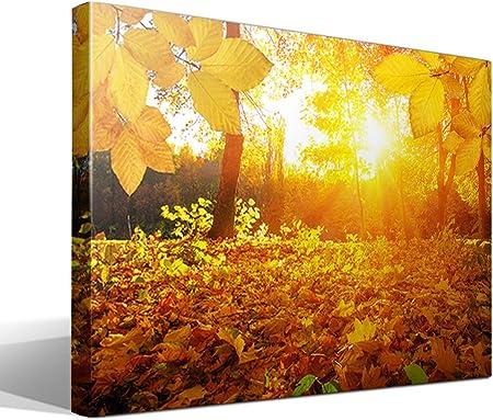 Cuadro Canvas Hojas de otoño - 95cm x 70cm - Fabricado en España: Amazon.es: Hogar