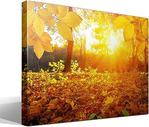Cuadro Canvas Hojas de otoño - 95cm x 70cm - Fabricado en España ...