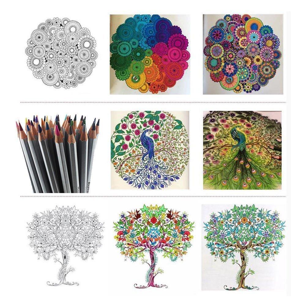 Color art colored pencils - Amazon Com Colored Pencils Kingtop 48 Color Art Colored Drawing Pencils For Artist Sketch Set Of 48 Assorted Colors Arts Crafts Sewing
