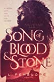 Song of Blood & Stone (Earthsinger Chronicles) (Volume 1)